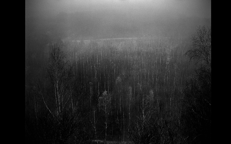 Quentin Derouet, Sans titre, 2014