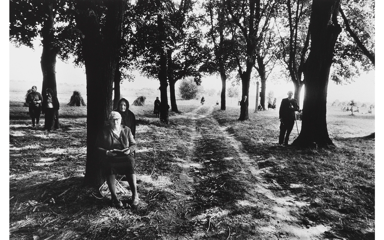 Jill Hartley, Poland, Waiting under trees