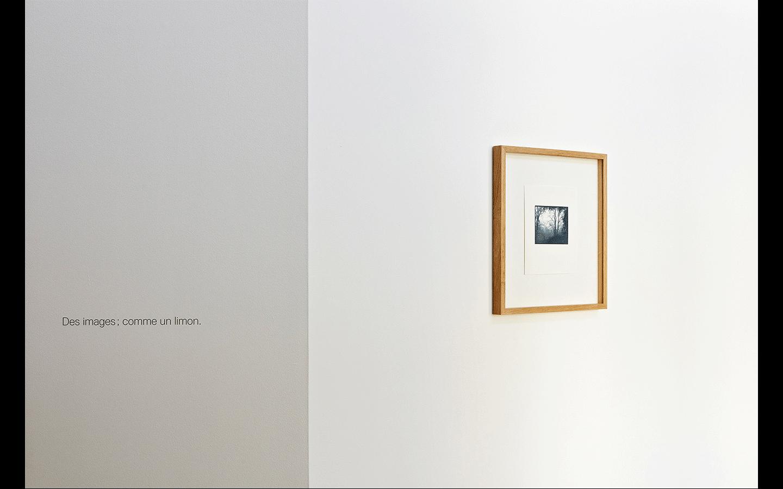 Vue partielle de l'exposition « Limons »