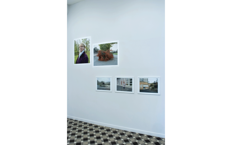 Vue partielle de l'exposition « Terre humide »