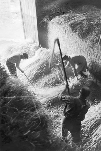 « Corèze », Battage au Fléau, 1965-1967 © Jean Marquis
